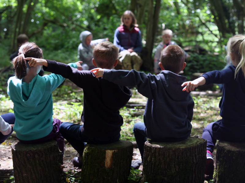 Children pointing during outdoor lesson