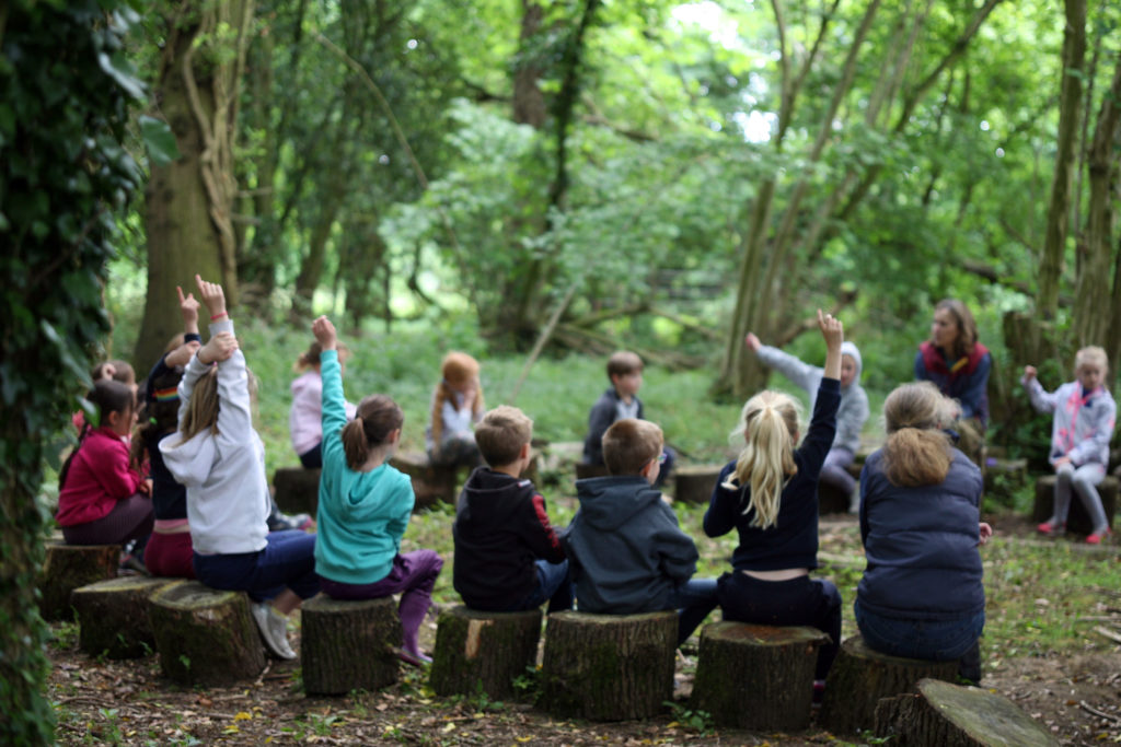 Children with hands up in outdoor lesson